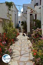 GriechenlandWeb.de Falatados Exomvourgo Tinos | Griechenland | Foto 21 - Foto GriechenlandWeb.de
