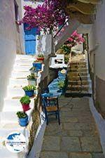 GriechenlandWeb.de Kardiani Tinos | Griechenland | Foto 34 - Foto GriechenlandWeb.de