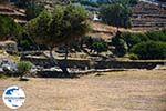 GriechenlandWeb.de Kionia Tinos | Griechenland | Foto 9 - Foto GriechenlandWeb.de