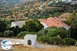 GriechenlandWeb.de Loutra Tinos | Griechenland | Foto 41 - Foto GriechenlandWeb.de
