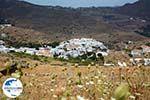 GriechenlandWeb.de Pyrgos Tinos | Griechenland | Fotto 2 - Foto GriechenlandWeb.de