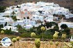 GriechenlandWeb Pyrgos Tinos | Griechenland | Fotto 3 - Foto GriechenlandWeb.de