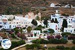 GriechenlandWeb.de Pyrgos Tinos | Griechenland | Fotto 10 - Foto GriechenlandWeb.de