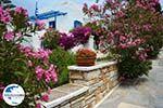 GriechenlandWeb.de Pyrgos Tinos | Griechenland | Fotto 17 - Foto GriechenlandWeb.de