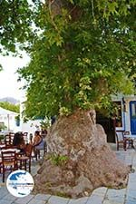 GriechenlandWeb.de Pyrgos Tinos | Griechenland | Fotto 27 - Foto GriechenlandWeb.de