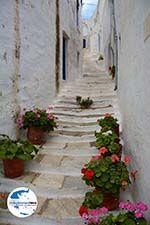 GriechenlandWeb.de Pyrgos Tinos | Griechenland | Fotto 39 - Foto GriechenlandWeb.de