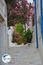 GriechenlandWeb.de Pyrgos Tinos | Griechenland | Fotto 47 - Foto GriechenlandWeb.de