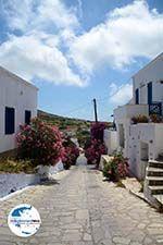 GriechenlandWeb.de Steni Tinos | Griechenland | Foto 4 - Foto GriechenlandWeb.de
