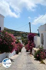 GriechenlandWeb.de Steni Tinos | Griechenland | Foto 5 - Foto GriechenlandWeb.de