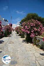 GriechenlandWeb.de Steni Tinos | Griechenland | Foto 14 - Foto GriechenlandWeb.de
