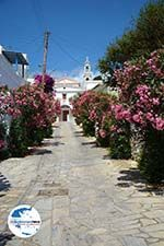 GriechenlandWeb.de Steni Tinos | Griechenland | Foto 15 - Foto GriechenlandWeb.de