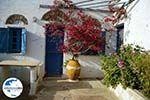 GriechenlandWeb.de Dorpje Tarampados Kampos Tinos | Griechenland | Foto 3 - Foto GriechenlandWeb.de