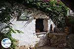 GriechenlandWeb.de Volax | Volakas Tinos | Griechenland foto 21 - Foto GriechenlandWeb.de