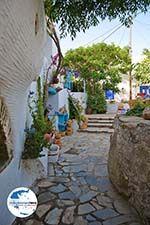 GriechenlandWeb.de Volax | Volakas Tinos | Griechenland foto 26 - Foto GriechenlandWeb.de