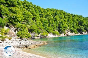 Milia Alonissos | Sporaden | GriechenlandWeb.de foto 1 - Foto von GriechenlandWeb.de