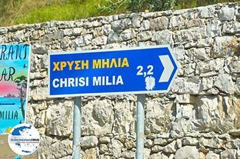 Chrisi Milia | Alonissos Sporaden | GriechenlandWeb.de foto 1 - Foto von GriechenlandWeb.de