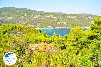 Tzortzi | Alonissos Sporaden | GriechenlandWeb.de foto 1 - Foto von GriechenlandWeb.de