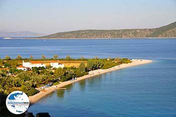 Agios Dimitrios | Alonissos Sporaden | GriechenlandWeb.de foto 9 - Foto von GriechenlandWeb.de