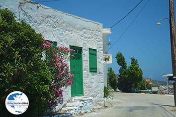 Arkesini Amorgos - Insel Amorgos - Kykladen foto 159 - Foto von GriechenlandWeb.de