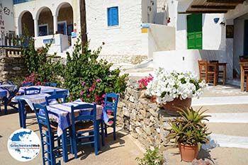 Tholaria Amorgos - Insel Amorgos - Kykladen Griechenland foto 294 - Foto von GriechenlandWeb.de