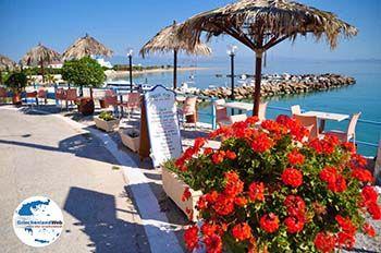 Skala | Agkistri Griechenland | Foto 6 - Foto von GriechenlandWeb.de