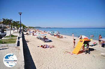 Polichrono | Kassandra Chalkidiki | GriechenlandWeb.de foto 3 - Foto von GriechenlandWeb.de