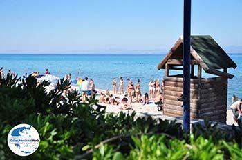 Chanioti | Kassandra Chalkidiki | GriechenlandWeb.de foto 22 - Foto von GriechenlandWeb.de