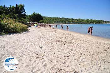 Chrousso beach Paliouri | Kassandra Chalkidiki | GriechenlandWeb.de foto 3 - Foto von GriechenlandWeb.de