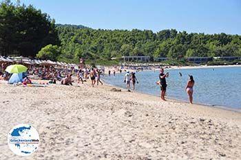 Chrousso beach Paliouri | Kassandra Chalkidiki | GriechenlandWeb.de foto 4 - Foto von GriechenlandWeb.de