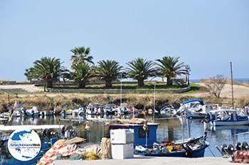 Nea Potidea | Kassandra Chalkidiki | GriechenlandWeb.de foto 29 - Foto von GriechenlandWeb.de