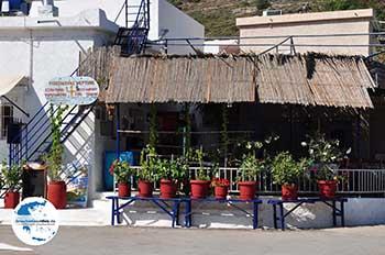 Bloempotten visrestaurant Emborios - Insel Chios - Foto von GriechenlandWeb.de