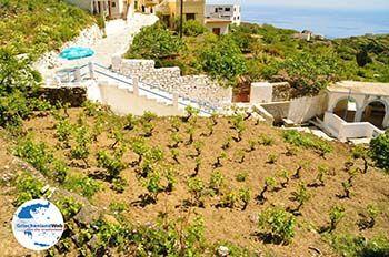 Spoa | Insel Karpathos | GriechenlandWeb.de foto 004 - Foto von GriechenlandWeb.de