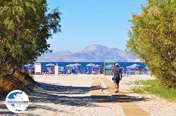 Marmari Kos | Insel Kos | Griechenland foto 11 - Foto von GriechenlandWeb.de