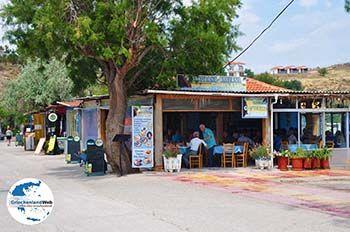 Restaurant Taverna Golden Sand Anaxos - Foto von GriechenlandWeb.de