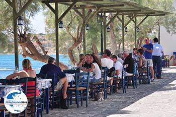Drios (Dryos) Paros | Kykladen | Griechenland foto 4 - Foto von GriechenlandWeb.de