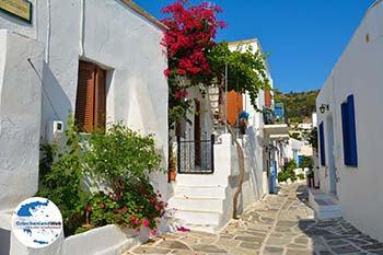 Lefkes Paros - Kykladen -  Foto 22 - Foto von GriechenlandWeb.de