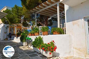 Lefkes Paros - Kykladen -  Foto 57 - Foto von GriechenlandWeb.de