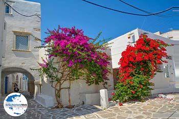 Parikia Paros - Kykladen -  Foto 50 - Foto GriechenlandWeb.de
