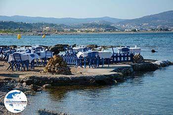 Kolymbia Rhodos - Rhodos Dodekanes - Foto 715 - Foto von GriechenlandWeb.de