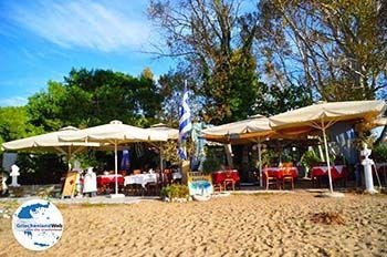 Troulos beach | Skiathos Sporaden | GriechenlandWeb.de foto 16 - Foto von GriechenlandWeb.de