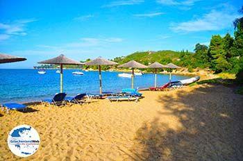 Aghia Paraskevi (Platanias beach) | Skiathos Sporaden | GriechenlandWeb.de foto 22 - Foto von GriechenlandWeb.de