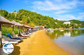 Kanapitsa | Skiathos Sporaden | GriechenlandWeb.de foto 20 - Foto von GriechenlandWeb.de