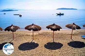 Vassilias | Skiathos Sporaden | GriechenlandWeb.de foto 6 - Foto von GriechenlandWeb.de