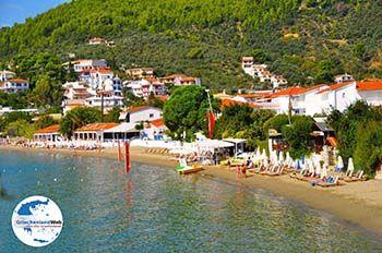 Megali Ammos (Ftelia) | Skiathos Sporaden | GriechenlandWeb.de foto 10 - Foto von GriechenlandWeb.de