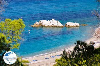 Milia | Skopelos Sporaden | GriechenlandWeb.de foto 2 - Foto von GriechenlandWeb.de