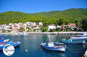 Klima-Elios und Hovolo | Skopelos Sporaden | GriechenlandWeb.de foto 4 - Foto von GriechenlandWeb.de