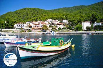 Klima-Elios und Hovolo | Skopelos Sporaden | GriechenlandWeb.de foto 7 - Foto von GriechenlandWeb.de