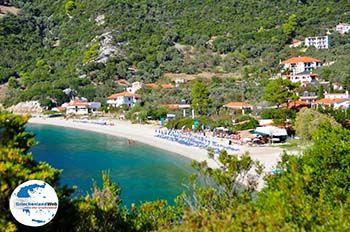 Panormos Skopelos | Sporaden | GriechenlandWeb.de foto 26 - Foto von GriechenlandWeb.de