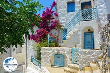 Chora Astypalaia (Astypalea) - Dodekanes -  Foto 98 - Foto von GriechenlandWeb.de