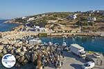 GriechenlandWeb.de Stavros Donoussa Kykladen - GriechenlandWeb.de foto 8 - Foto GriechenlandWeb.de
